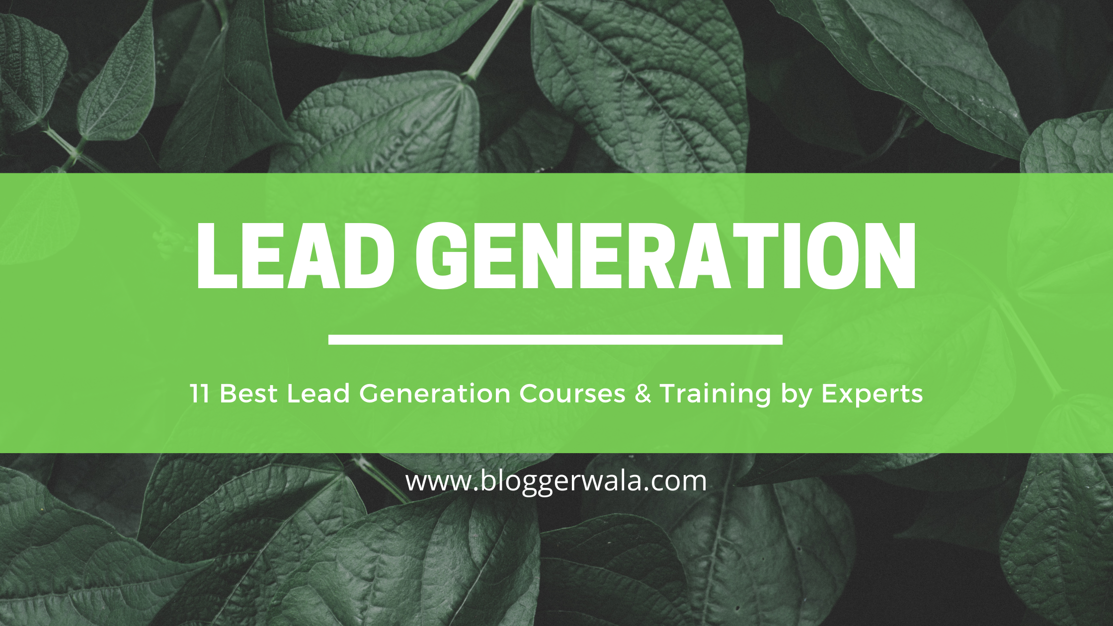 Best Lead Generation Courses